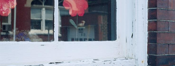 Peeling Window Sills And Frames Sherwin Williams