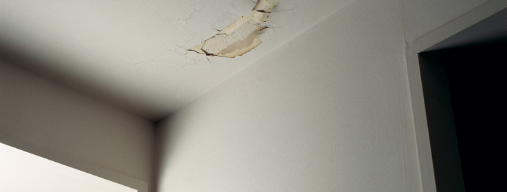 peeling plaster sherwin williams. Black Bedroom Furniture Sets. Home Design Ideas