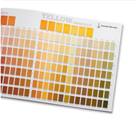 Colorsnap Palette Guide