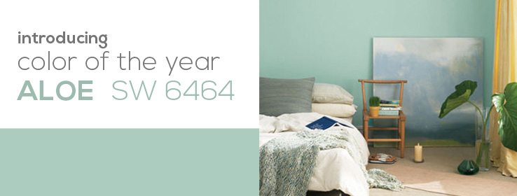 SW - 2013 Color Of The Year - DIY Header
