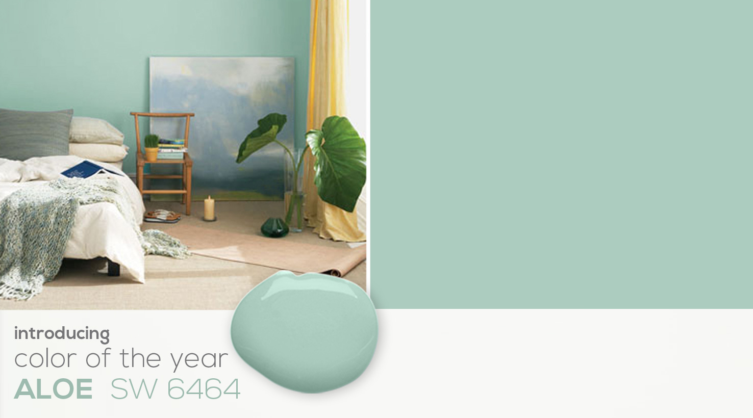 SW - 2013 Color Of The Year - Landing DIY