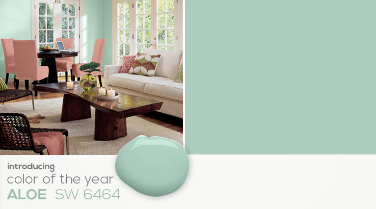 SW - 2013 Color Of The Year - Landing PRO