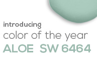 SW - 2013 Color Of The Year - Category