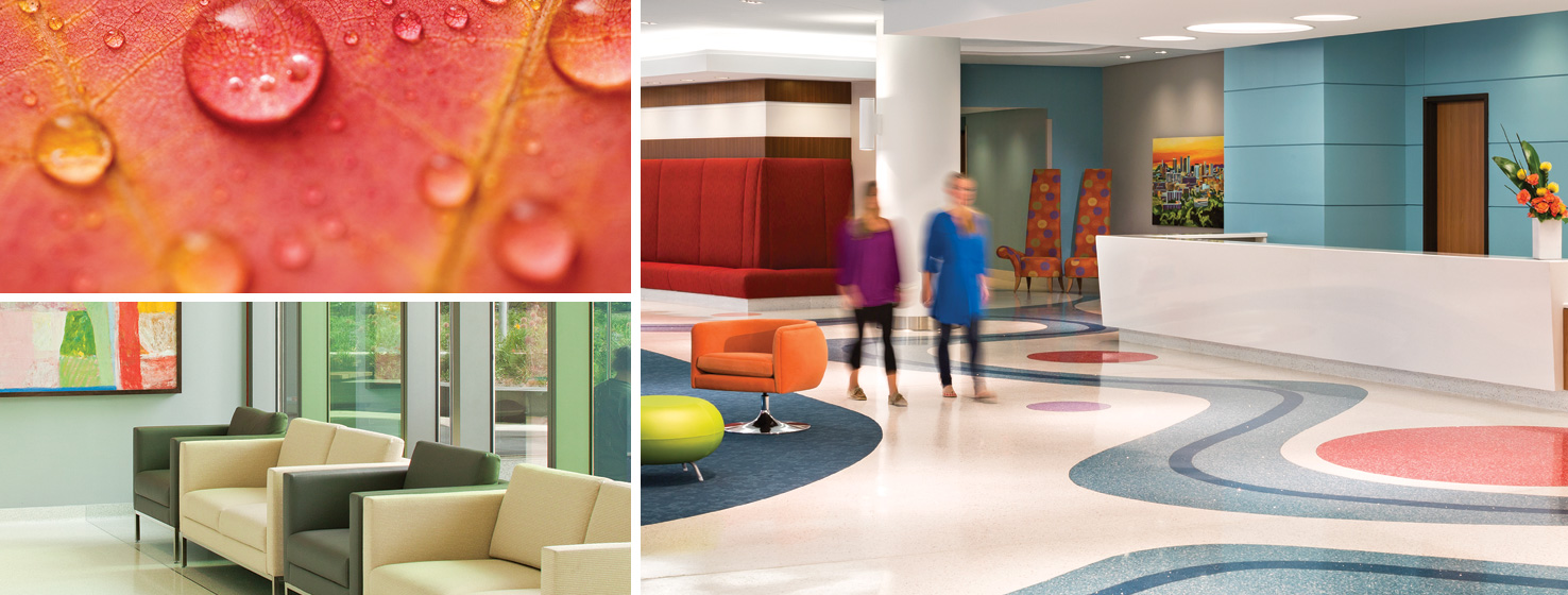 Acute Care Color Collections - Fresh Dynamic Color Palettes By ...